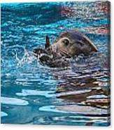 Treading Water V2 Canvas Print