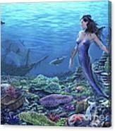 Treasure of the Sea Canvas Print