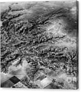 Tree Aerial Landscape V2 Canvas Print