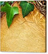 Tree Background Canvas Print