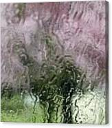 Tree Blossoms In The Rain Canvas Print