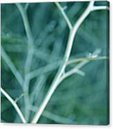 Tree Branches Abstract Teal Canvas Print
