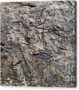 Tree Em Canvas Print