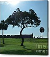 Tree Fort Canvas Print