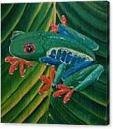 Tree Frog Koi Canvas Print