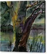 Tree In A Dream Canvas Print