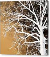 Tree In Abstract Canvas Print