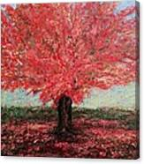 Tree In Fall Canvas Print