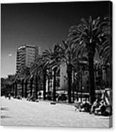 Tree Lined Seafront Promenade Salou Catalonia Spain Canvas Print