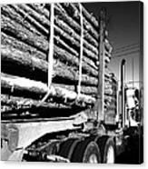 Tree Logger Canvas Print