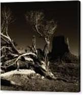 Tree Monument Valley Canvas Print
