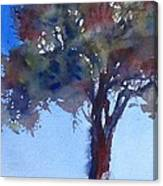 Tree Of Color Canvas Print