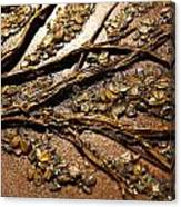 Tree Of Hope Detail Canvas Print