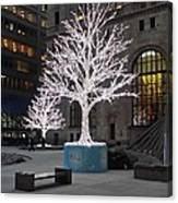 Tree Of Lights I Canvas Print