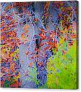 Tree Of Many Colors Canvas Print