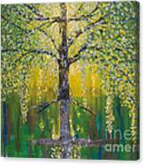 Tree Of Reflection Canvas Print