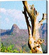 Tree Painting Canvas Print