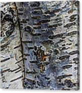 Tree People Canvas Print