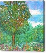Tree Poem Canvas Print