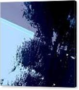 Tree Reflection Abstract Canvas Print