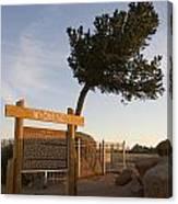 Tree Rock Wyoming Canvas Print