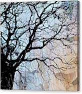 Tree Skeleton Layer Over Opaque Image Canvas Print