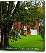 Tree With Scripture Canvas Print