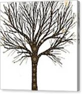 Treedom Canvas Print