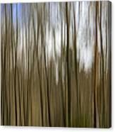 Trees #2 Canvas Print