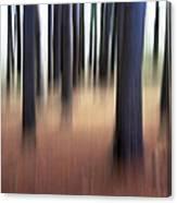Trees #3 Canvas Print