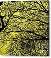 Trees Abstarct Yellow Canvas Print