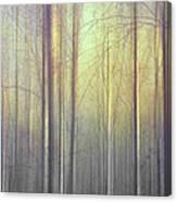 Trees Abstraction Canvas Print