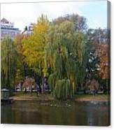 Trees At The Boston Public Garden Canvas Print