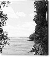 Trees At The Lakeside, Cave Point Canvas Print