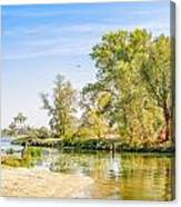 Trees Close To The River Canvas Print
