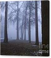 Trees Greenlake With Man Walking Canvas Print
