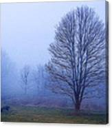 Trees In Fog #2 Canvas Print