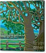Trees In Love Canvas Print