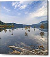 Trees In The Lake Canvas Print