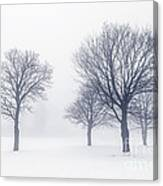 Trees In Winter Fog Canvas Print
