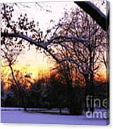 Trees In Wintry Pennsylvania Twilight Canvas Print