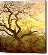 Trees Of Crows Canvas Print