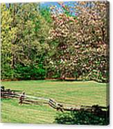 Trees On A Field, Davidson River Canvas Print