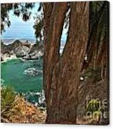 Trees Over Mcway Falls Canvas Print