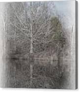 Tree's Reflection Canvas Print