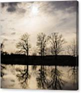 Trees Shadow Reflection On The Water Creating Mirror Effect Wood Print
