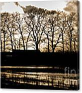 Trees Silhouettes Canvas Print