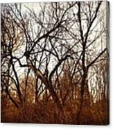 Trees With Figures Canvas Print