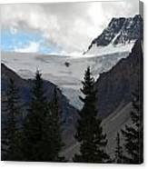 Treescape In Canada Canvas Print