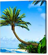 Treescape North Shore Canvas Print